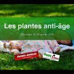 Les plantes anti-âge (1ère partie)