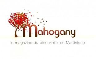 Magazine TV Mahogany