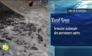 Retour sur l'opération Koud' senn à Schoelcher