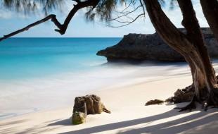 La Barbade : un joyau au sein de l'archipel des Caraïbes