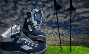 La marche nordique, un sport complet pour les seniors