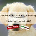 Les seniors et les animaux de compagnie – 2ème partie