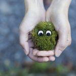20 gestes éco-citoyens pour protéger notre planète