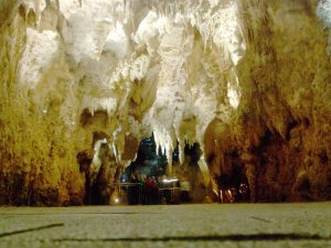 Cathedral in Waitomo Cave