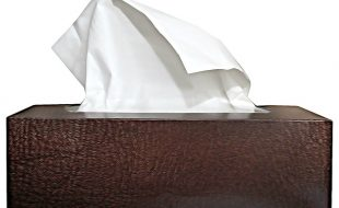 La grippe : il faut se protéger !
