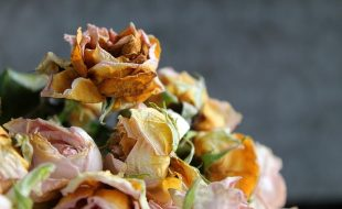 fleurs obseques