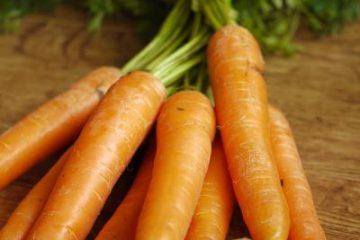 La carotte by Alice