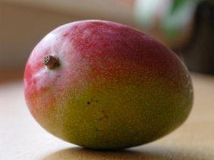 mangue 3