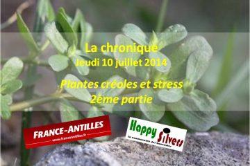 Plantes créoles et stress – 2ème partie