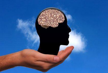 Un corps sain synonyme d'un cerveau en santé ?