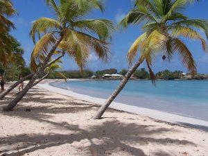 Martinique Beach Salines
