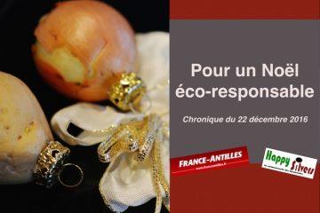 Pour passer un Noël éco-responsable