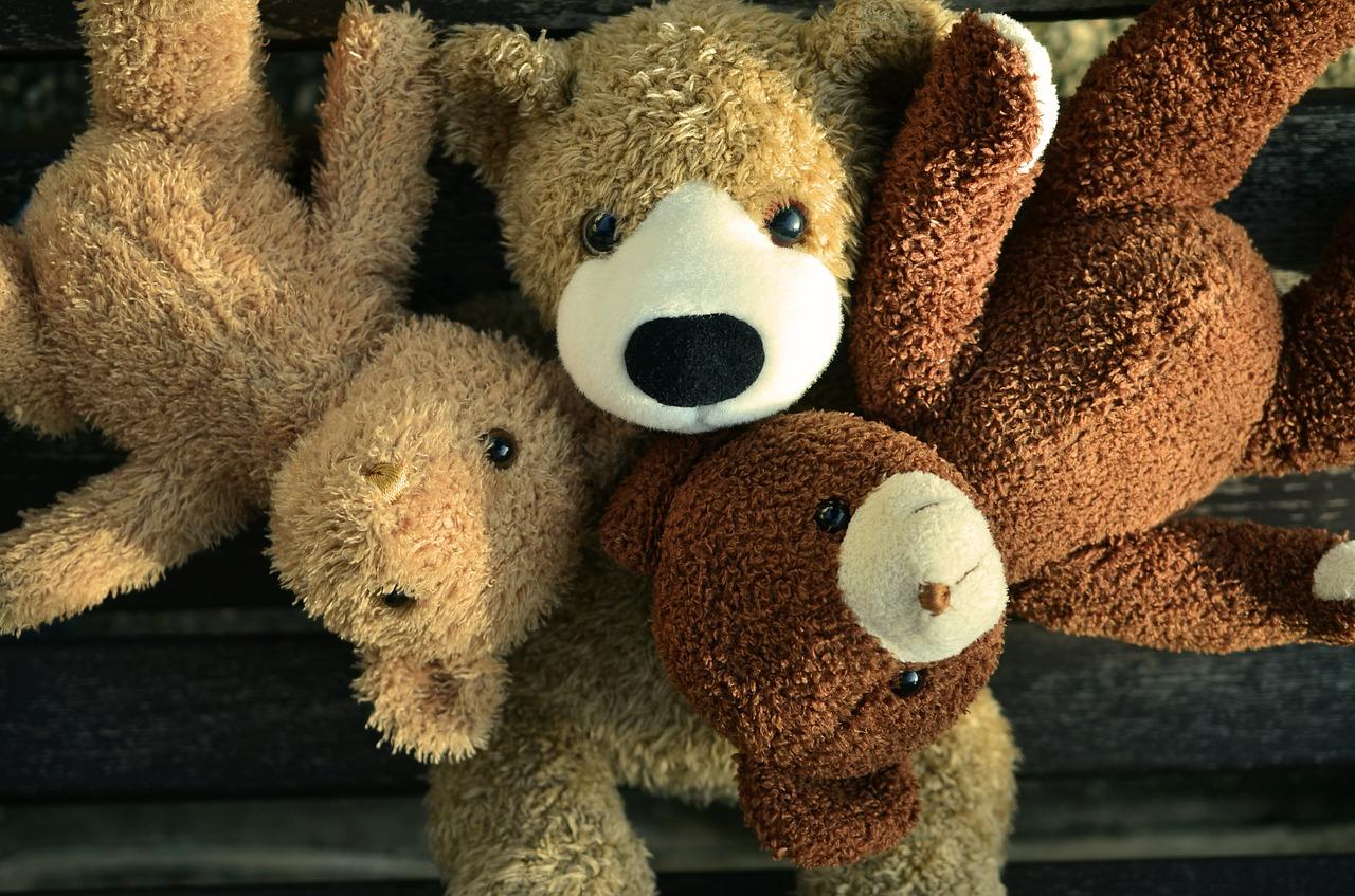 amis ours en peluche