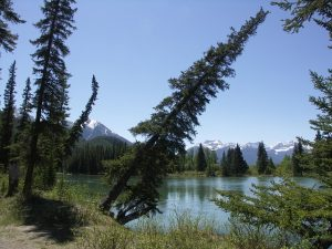 canada parc national de Banff