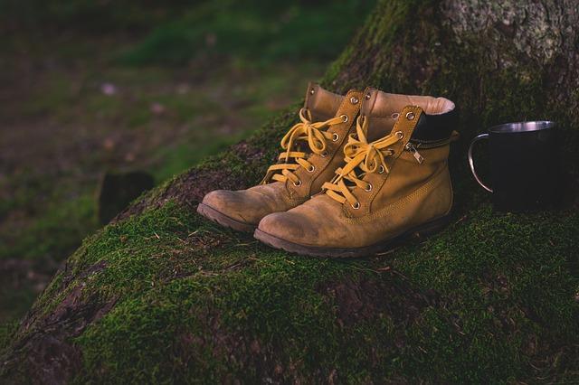 chaussures randonnee