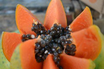 La papaye, vous l'aimez verte ou mûre ?