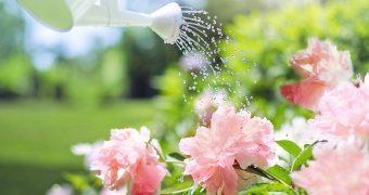 15 astuces pour économiser sur sa facture d'eau
