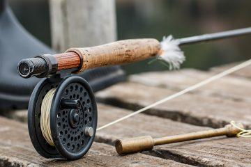 Cinq raisons de se mettre à la pêche en eau douce