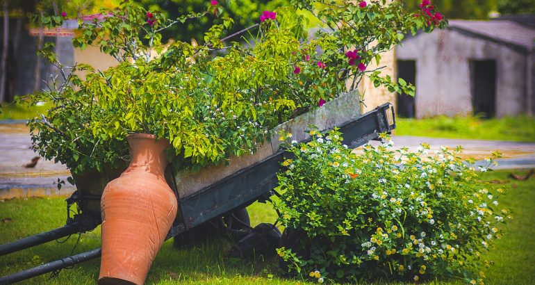 service a la personne jardinage