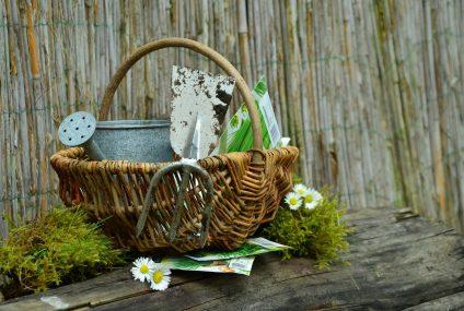 7 conseils pour entretenir son jardin quand on est senior