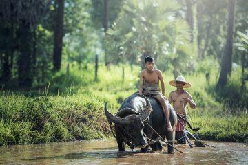 Passer des vacances inédites en Birmanie