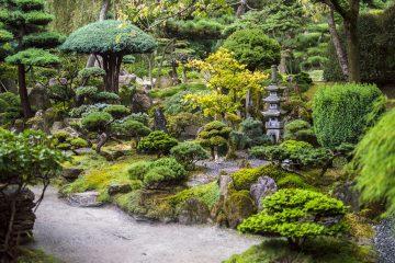 Le Japon, une destination dépaysante à découvrir en famille