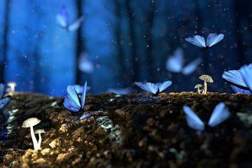 5 raisons pour lesquelles nous avons besoin de fantaisie dans nos vies
