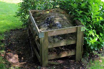 Quand vos déchets deviennent une ressource inépuisable : le compost (1)