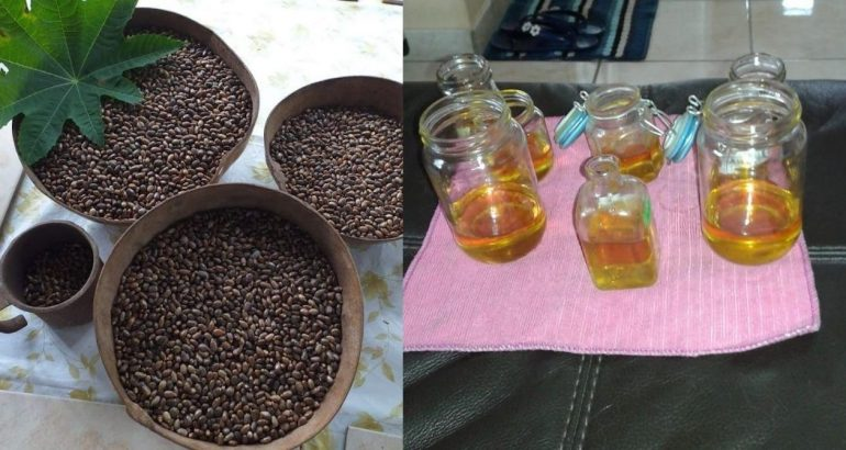huile de carapate
