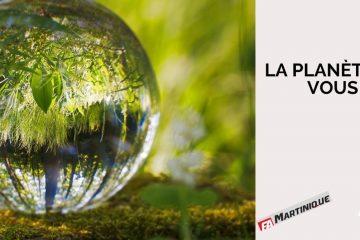 Et vous, que faites-vous pour le développement durable et la planète ?